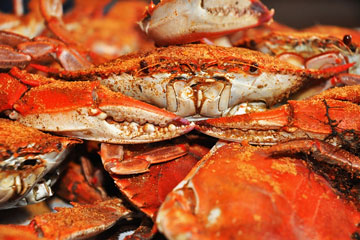 seasoned steamed crabs